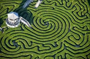 longleat-hedge-maze-1[2]